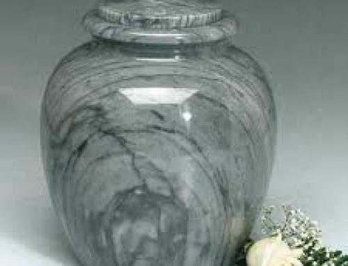 Кремация и ритуальные услуги собак