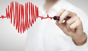 news-veterinary-cardiology