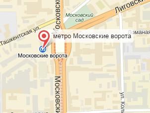 Ветеринар на дом Московские ворота