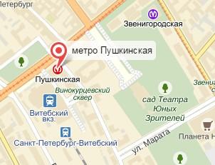 Ветеринар на дом Пушкинская