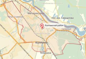 Ветеринар на дом Кировский район