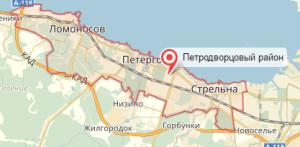 Ветеринар на дом Петродворцовый район