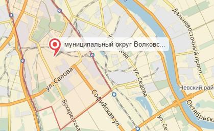 Ветеринар на дом Волковское округ