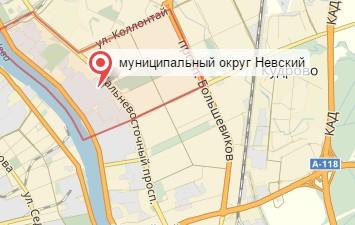Ветеринар на дом Невский округ