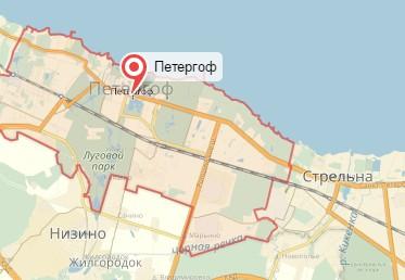Ветеринар на дом город Петергоф