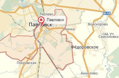 Ветеринар на дом город Павловск
