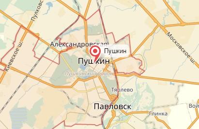 Ветеринар на дом город Пушкин